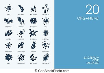 Set of BLUE HAMSTER Library organisms icons - BLUE HAMSTER...