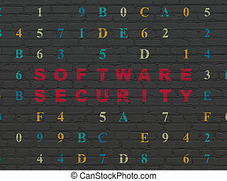 Protection concept: Software Security on wall background -...