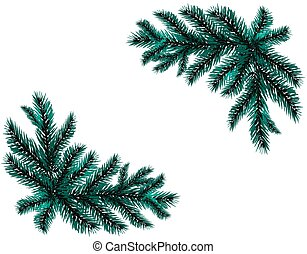 Two realistic branch blue spruce. Placed in the corners. Fir branches. Isolated on white background. Christmas illustration