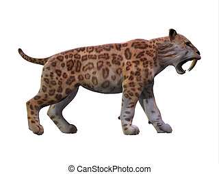 Saber-toothed Cat Profile