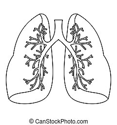 Lungs icon, outline style - Lungs icon. Outline illustration...