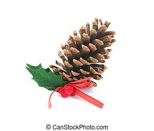 Pine Cone - Pine cone
