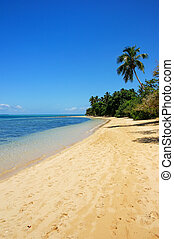 Sandy beach at Pangaimotu island near Tongatapu island in...