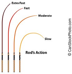Rod action diagram characteristics vector illustration...