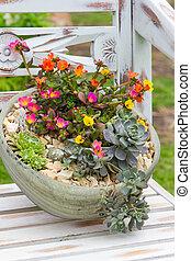 A earthen flowerpot with rock garden plants. - A earthen...
