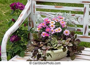 A earthen flowerpot with Chrysanthemum. - A earthen...