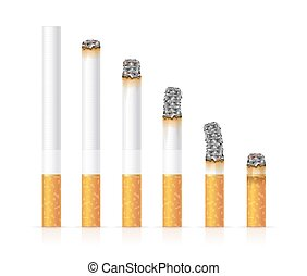 Realistic Cigarette Set Different Stages of Burn. Vector