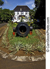 naval museum flower and bush - mauritius mahebourg naval...