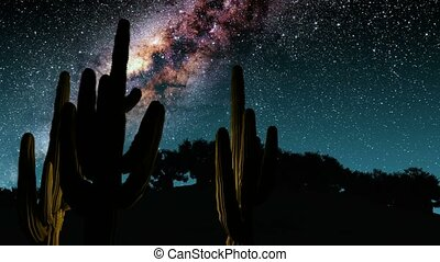 cactuses and Milky Way stars at night. Elements of this image furnished by NASA