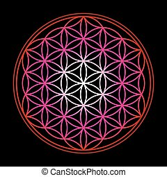 Flower Of Life Red Black Background
