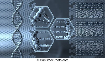 Spinning DNA molecules blue motion background. Genetic...