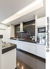 Kitchen with steely canopy - Modern and light kitchen with...