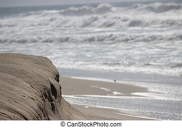California Beach Sand Dune