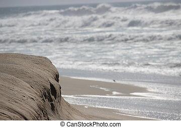 California Beach Sand Dune