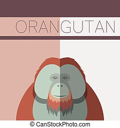 Orangutan flat postcard - Vector image of the Orangutan flat...