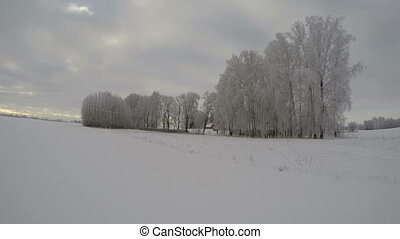 Landscape with hoarfrost covered trees on overcast grey day,...