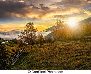 foggy and hot sunset in Carpathian mountains