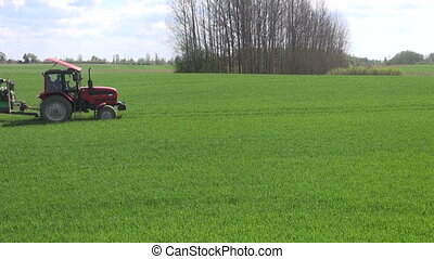 Tractor spraying young wheat field - Tractor spraying green...