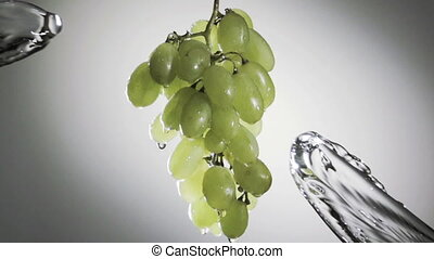 bunch of green grapes in a spray of water.