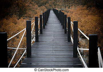 Wooden bridge of walkways in mangrove forest with autumn...