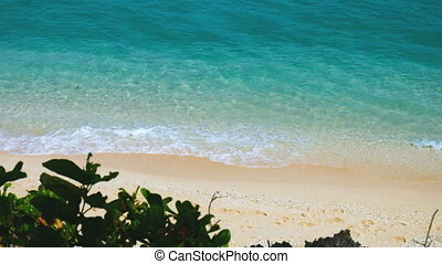 Tropical beach in the morning - Secluded tropical beach in...