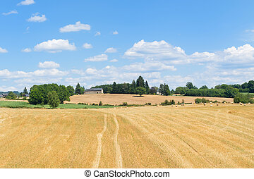 Agriculture landscape in France - Agriculture landscape with...