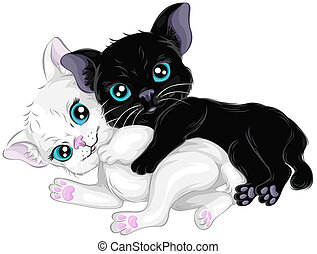 Kittens - Black and White Kittens with Clipping Path