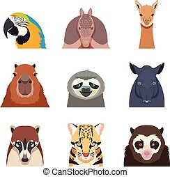 Set of south america animals flat icons - Vector image of...