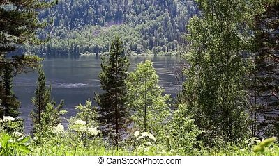 View of Lake Teletskoye in the Altai Republic