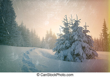 Winter landscape with footpath in the snow and spruce forest...