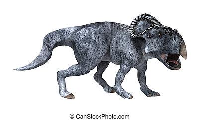3D Rendering Dinosaur Protoceratops on White - 3D rendering...