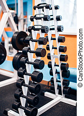 many dumbbells are at stand at the gym