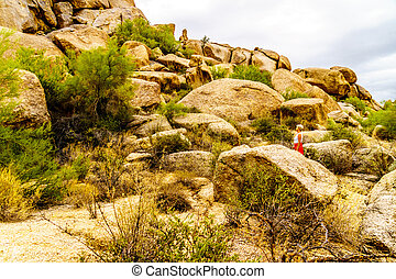 Senior Woman amidst Cacti, Shrubs and large Rocks and Boulders in the desert