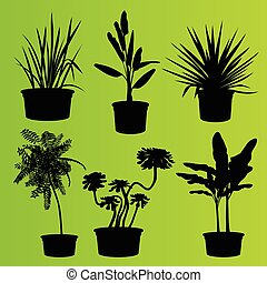 House plants in flower pots set isolated vector background