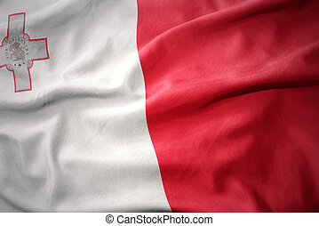 waving colorful flag of malta.