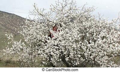 Couple having fun sitting in a tree