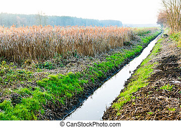 drainage ditch in autumn scenery - drainage ditch channel to...