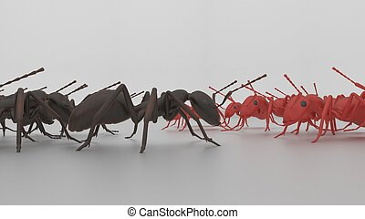 ant face off 3d render - rad and blsck ants about to go to...