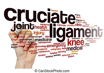 Cruciate ligament word cloud concept