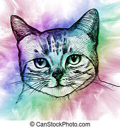 ser, usado, coisas, coloridos, abstratos, Ilustração, gato,...
