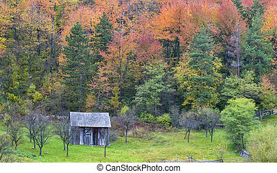 Autumn Landscape with a wooden house. Colorful forest on the slopes of the mountains