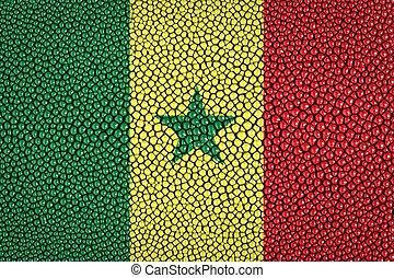 Senegal Flag painted on stingray skin texture
