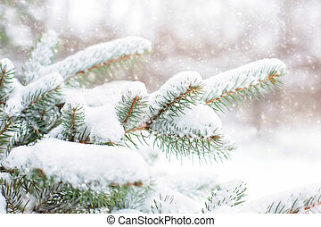 Bright winter landscape with snow-covered pine trees