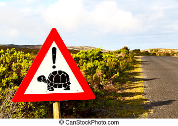 in south africa close up of the turtle sign - blur in south...