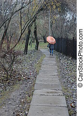Woman walking down the street rainy autumn - view from the...
