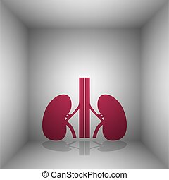 Human kidneys sign. Bordo icon with shadow in the room.