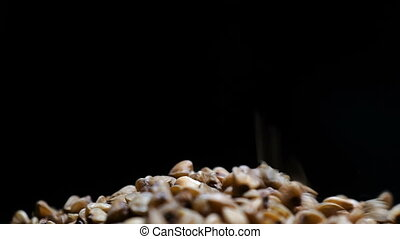 Footage Buckwheat falls into a plate. HD video