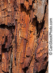 Old wooden and rusty texture - Old wooden and orange rusty...
