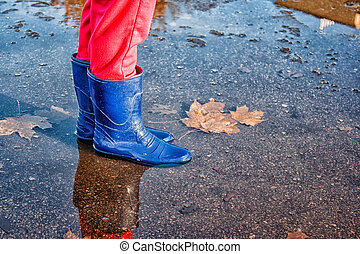 legs of little girl standing in a pool of autumn - legs of...