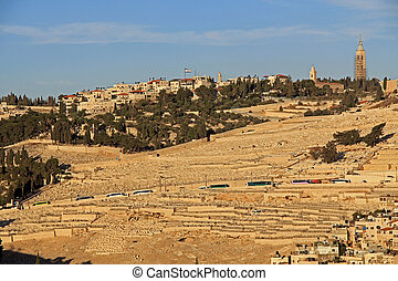 Cemetery and Homes on the Mt. of Olives - Cemetery and homes...